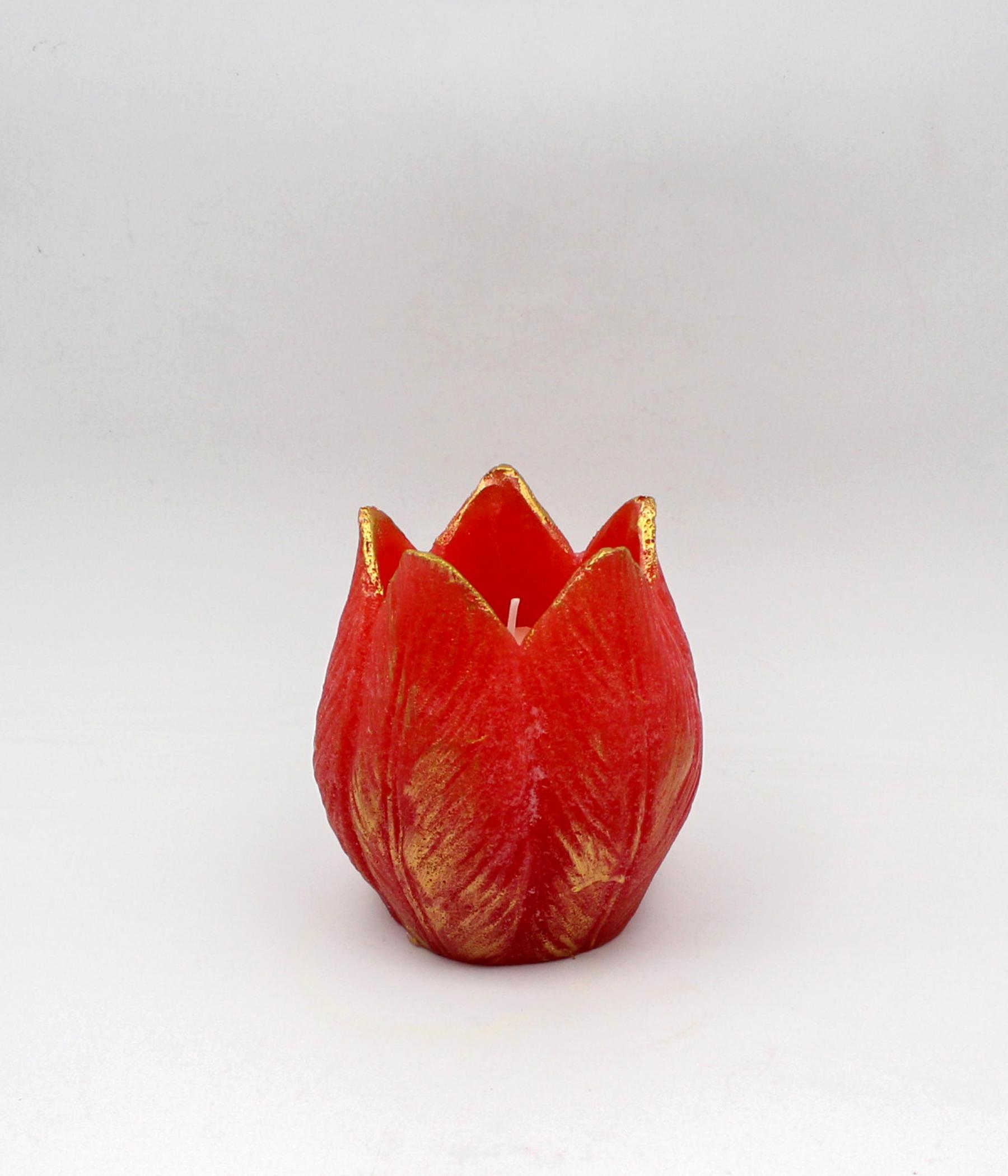 Candela tulipano spugnato
