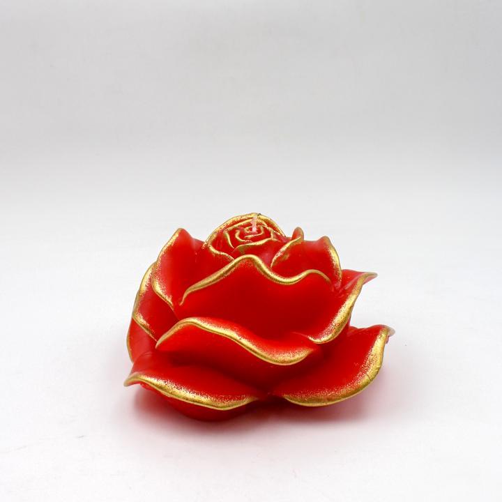 Stylnove rosa spugnata
